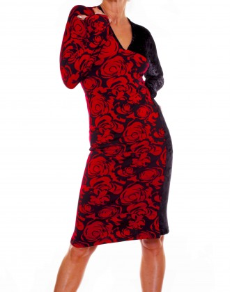 Black Velvet and Red Floral Dress